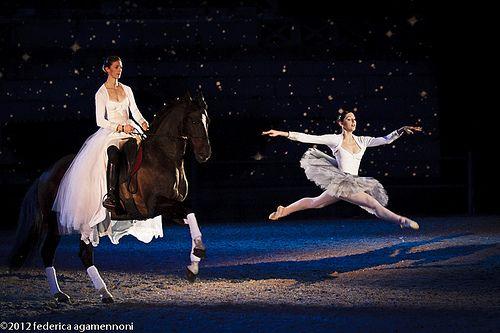 2012_02_18_spettacolo_i_cavalli_di_roma_FEDERICAAGAMENNONI_-0533