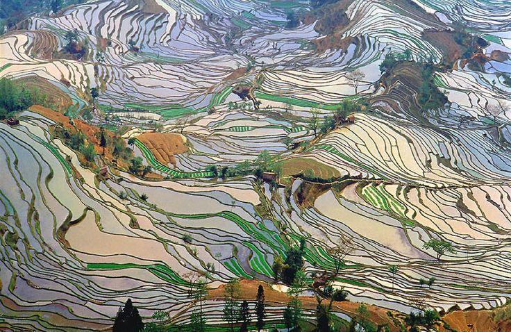 Terrace rice fields in Yunnan Province, China – shot 2.