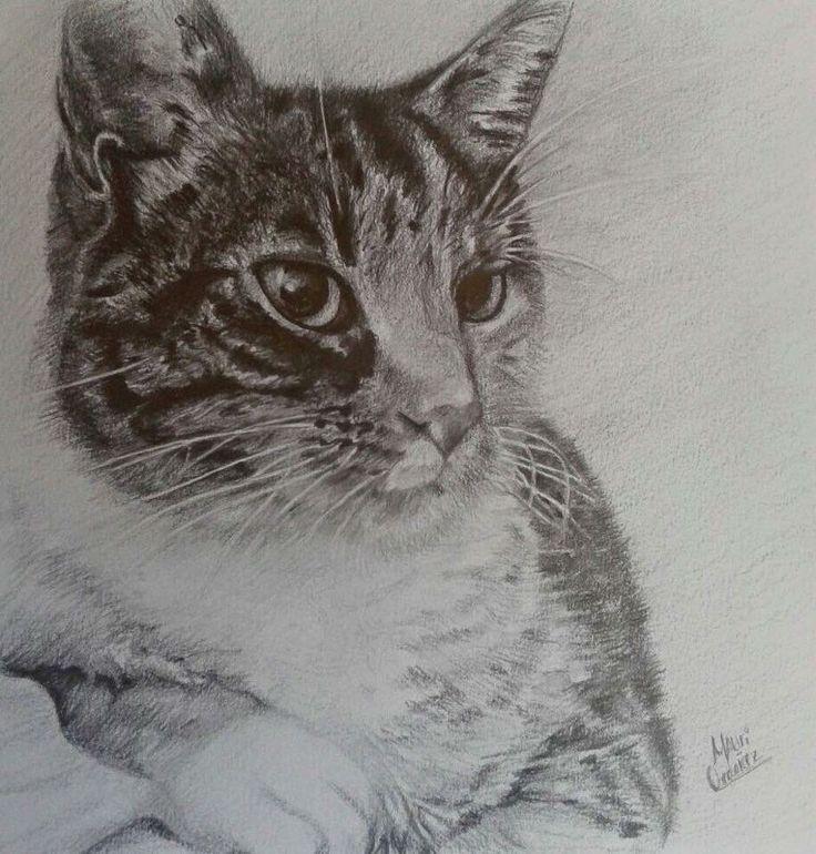 Art cat graphite pencil
