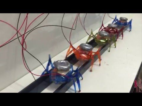 Let's all Pull Together: Team of µTug Microrobots Pulls a Car - YouTube
