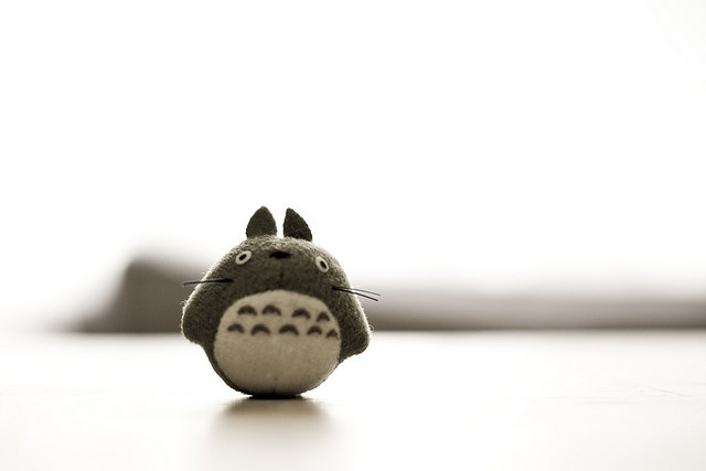 tiny totoro by thekevinchang, via Flickr
