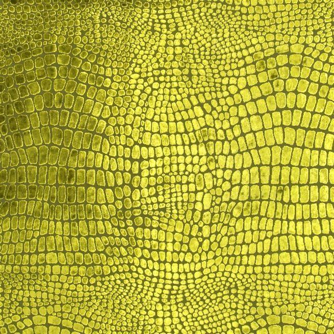 nabucco - robinia fabric | Desigenrs Guild Essentials