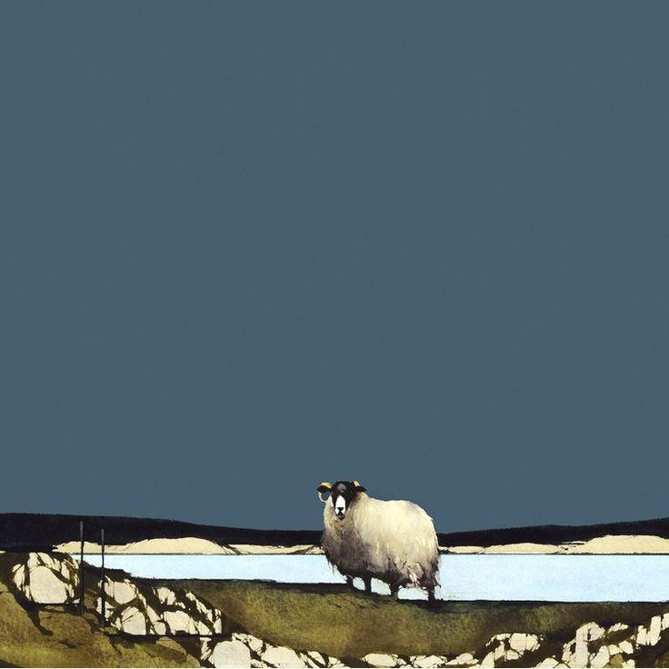 Blackfaced Sheep II - Ron Lawson (Signed Limited Edition Giclee on Paper)