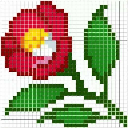 20621326_10213244130325231_7013474444545918748_n.jpg (518×518)