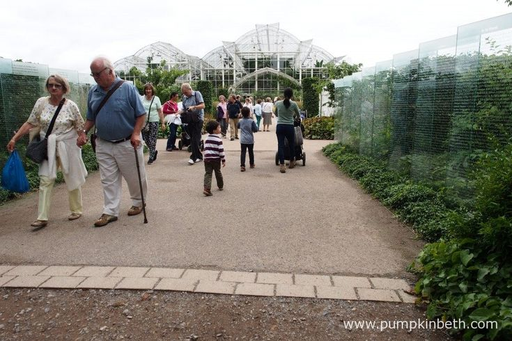 Don't forget to visit the Wisley Glasshouse!