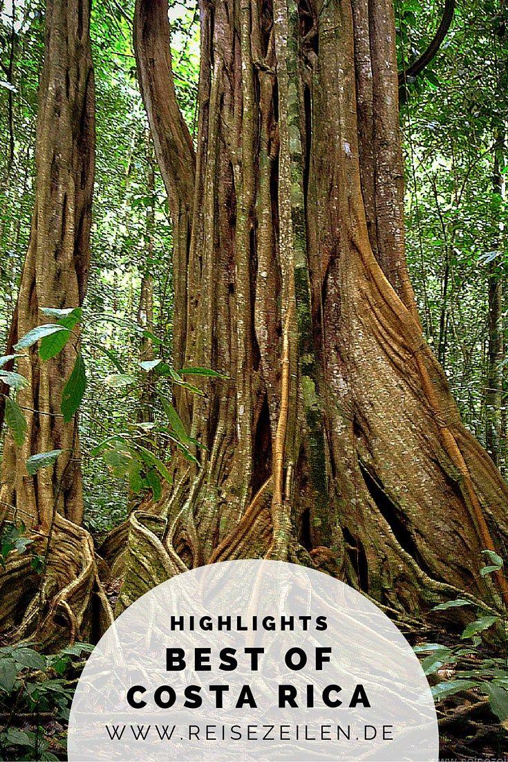 Meine Highlights in Costa Rica: Vulkan Arenal, Tortuguero Nationalpark und Corcovado Nationalpark