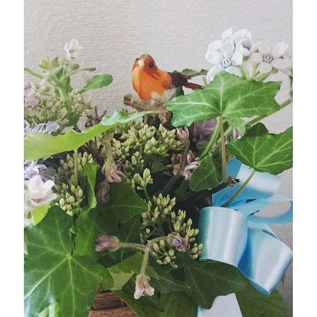 【3yok0】さんのInstagramをピンしています。 《家にいた鳥さんを添えたら、森にいる鳥みたい #アレンジメント#お花#花#フラワー#Flower#北上市#ハミングバード#森#鳥#bird#フォレスト#かご#鳥かご#鳥の巣#誕生日プレゼント#花かご#お花屋さん #癒し#happy #present#花のある生活》