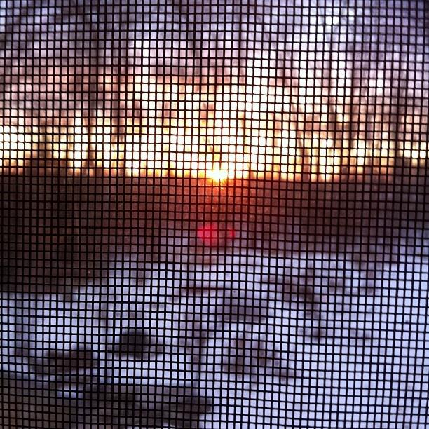 - @nediard | Webstagram  Sunset through my window!