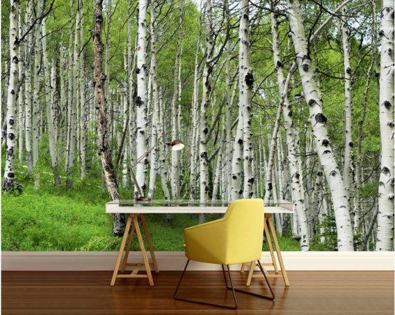25 best ideas about tree wall murals on pinterest wall for Birch tree mural wallpaper