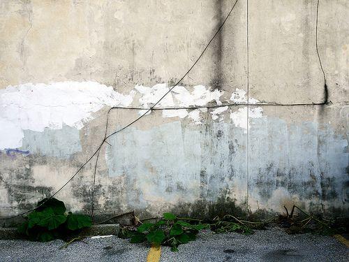 philly wall still
