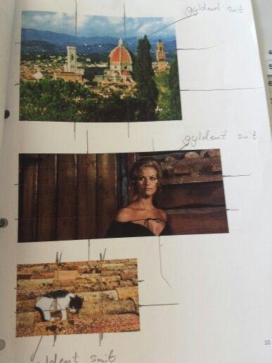 Her arbejder jeg med at finde det gyldne snit i forskellige billeder