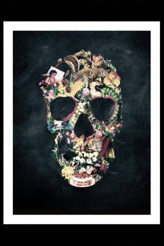 Vintage Skull Fine Art Print - £40.00