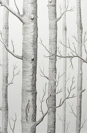 COLE & SON Woods wallpaper