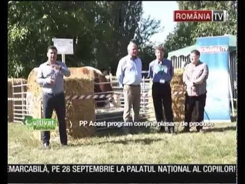 Idee de afacere care încolțește frumos: Ghivecele bio cu plante medicinale și aromatice #agrointel.ro