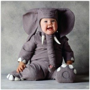 Elephant - omg this is happening when I have a kid