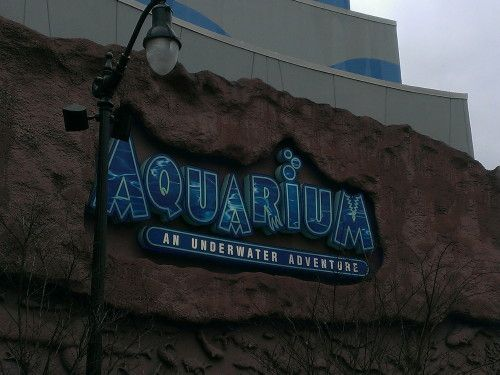 Aquarium Restaurant – Nashville, TN  Went here before.. Soo awesome! Must go again!