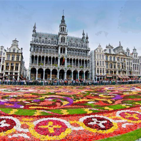 Bloementapijt, een topevenement op de Grote Markt van Brussel