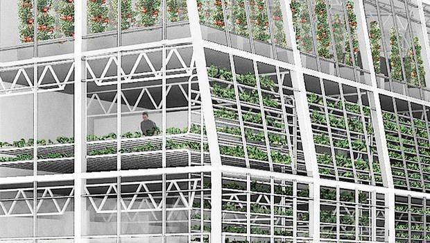 A unique conveyer belt design allows the three-story greenhouse to be efficient and sustainable, providing jobs and fresh produce to Jackson.