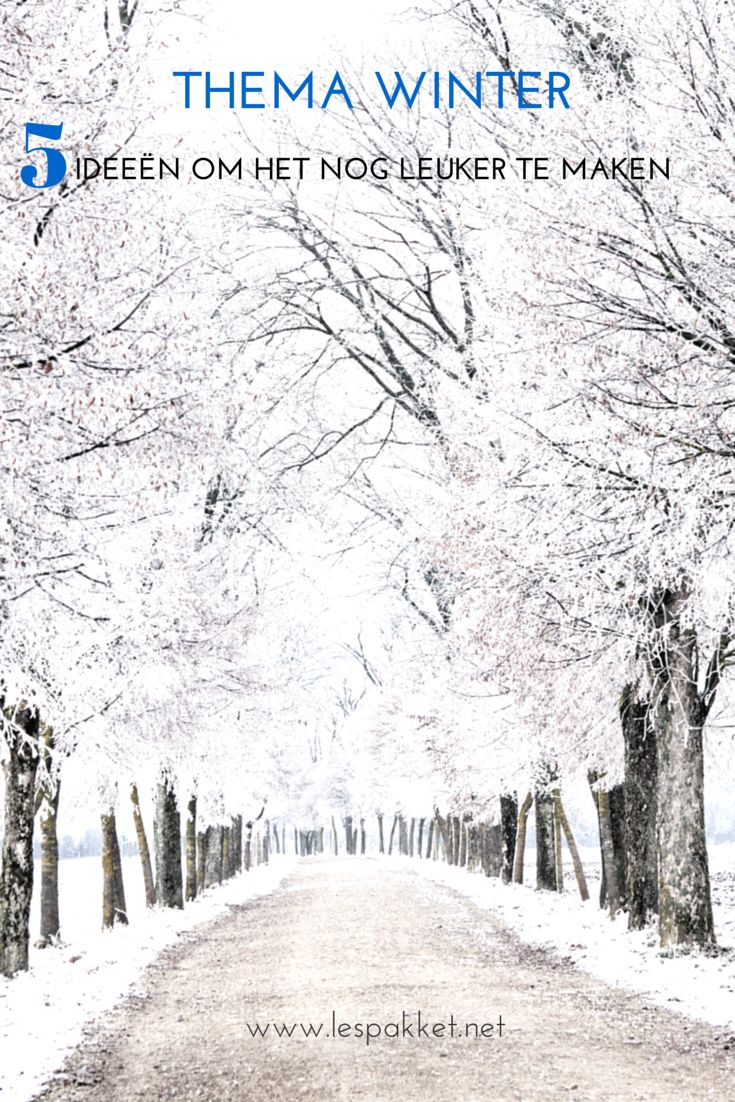 5 ideeën om je thema winter nog leuker te maken (scheduled via http://www.tailwindapp.com?utm_source=pinterest&utm_medium=twpin&utm_content=post383921&utm_campaign=scheduler_attribution)