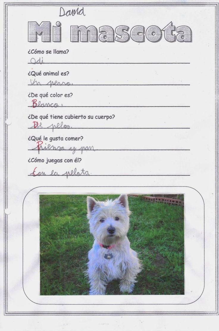 Ficha sobre nuestras mascotas nos sirve para aprender a - Todo para nuestras mascotas ...