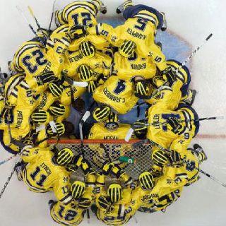 Michigan Hockey!