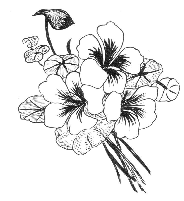 красивые черно белые картинки цветы тейпы