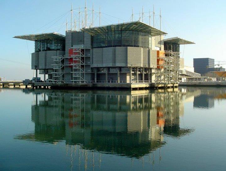 Lisbon's Oceanarium, the biggest one in Europe
