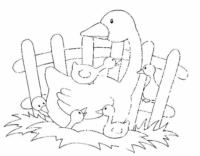 Libás kifestők (goose) - mivagyunk.lapunk.hu