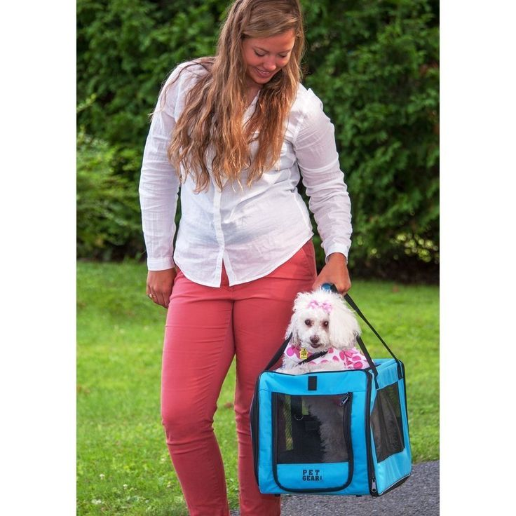 PET GEAR SIGNATURE Pet Car Seat & Carrier 20 - Pounds Aqua - Cats Dogs Holder