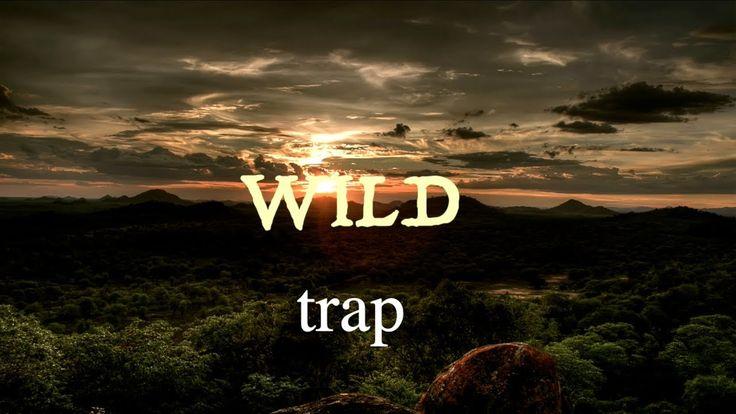 WILD - trap (Audio) - YouTube
