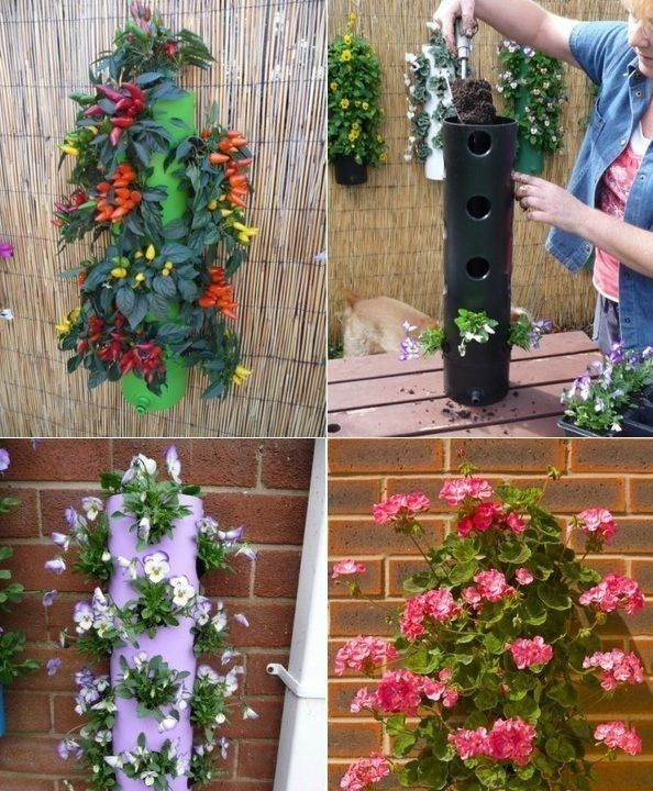 Las 25 mejores ideas sobre jardines verticales caseros en - Plantas para jardines verticales ...