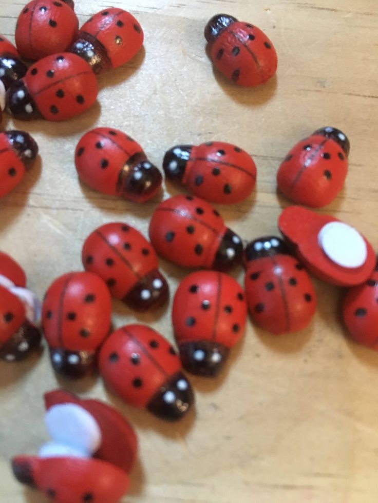 A personal favourite from my Etsy shop https://www.etsy.com/au/listing/550605523/wooden-stick-on-ladybird-embellishment