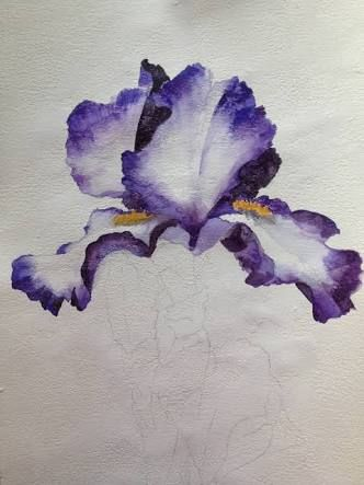how to paint iris flowers in acrylic - Google Search