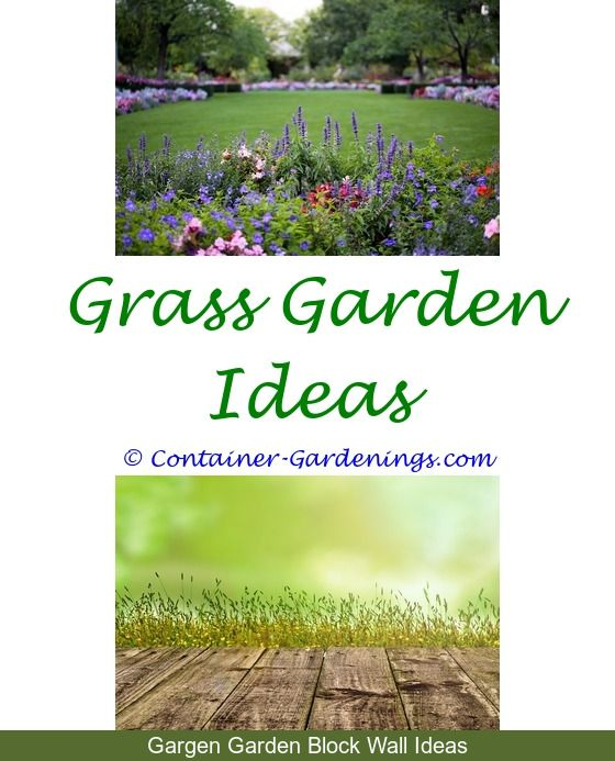 694 best Vegetable Garden Ideas For Small Spaces images on Pinterest