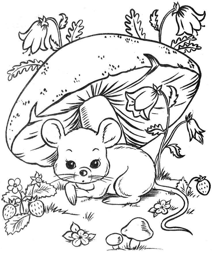 rato e cogumelo