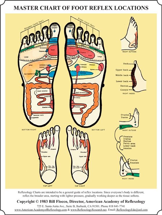 Foot Reflexology Workshop #Foot Reflexology Chart #Reflexology Certificate Class