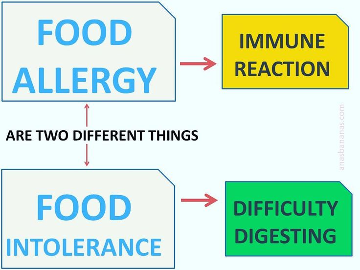 Very relevant topic in modern nutrition... It's seems like everyone has a gluten or lactose intolerance A food allergy is a rapid and potentially serious response to a food by your immune system. It can trigger classic allergy symptoms such as a rash wheezing and itching. In rare cases the symptoms can be very severe and can cause potentially fatal breathing difficulties!  An intolerance is less severe but may bring on very similar symptoms and more uncomfortable groggy feeling brought on…