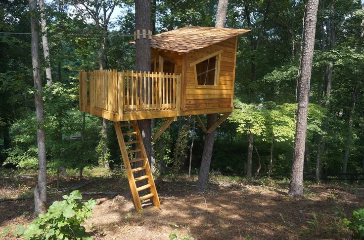 tree fort siding and roof