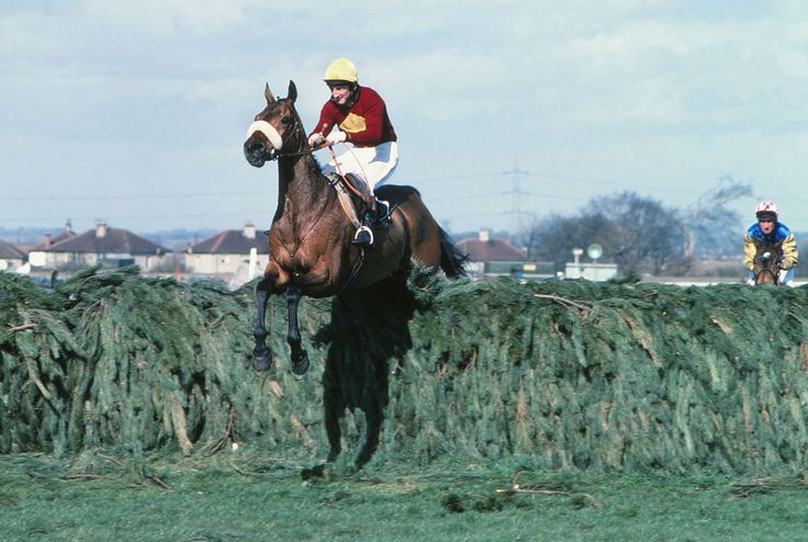 Red Rum winning the 1977 Grand National. Thrice winner of the Grand National.