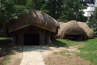 A burdei, or bordei (Ukrainian: бурдей, бурдій[1], Romanian: bordei) is a type of half-dugout shelter, somewhat between a sod house and a log cabin. This style is native to the Carpathian Mountains and forest steppes of eastern Europe.