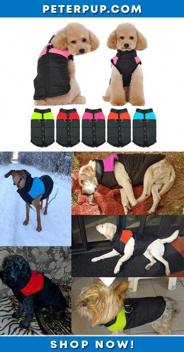 Dogs Hacks Dogs Diy Dogs Room Dogs Pictures Dogs Bed Dogs Collar Dogs Clothes Dogsroom Dog Winter Clothes Dog Clothes Big Dog Crates