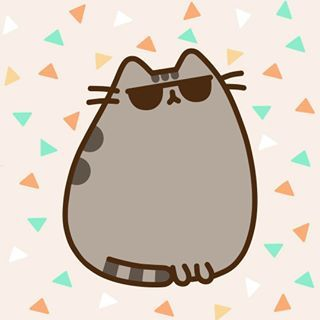 Pusheen is the coolest and we all know it ! #pusheen #pusheenbox