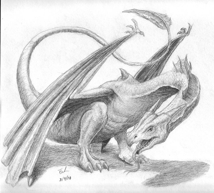 93 best dragons images on Pinterest | Sketches, Drawing ...