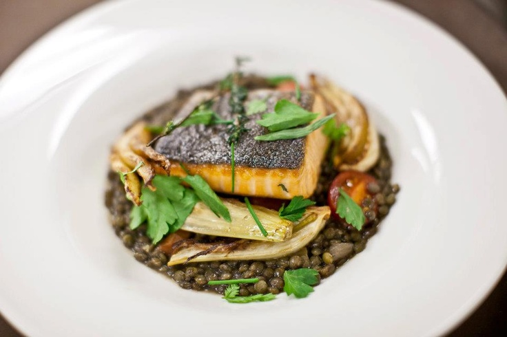 pan roasted atlantic salmon, green lentils, roasted fennel and cherry ...