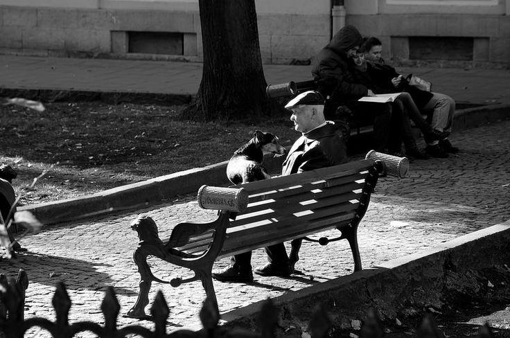 The Friends Always Stay / Друзі завжди залишаються  The Rynok Square (Ringplatz), November 2014, Lviv, Ukraine. Sony NEX-5N, Minolta AF 24-105mm F3.5-4.5 D