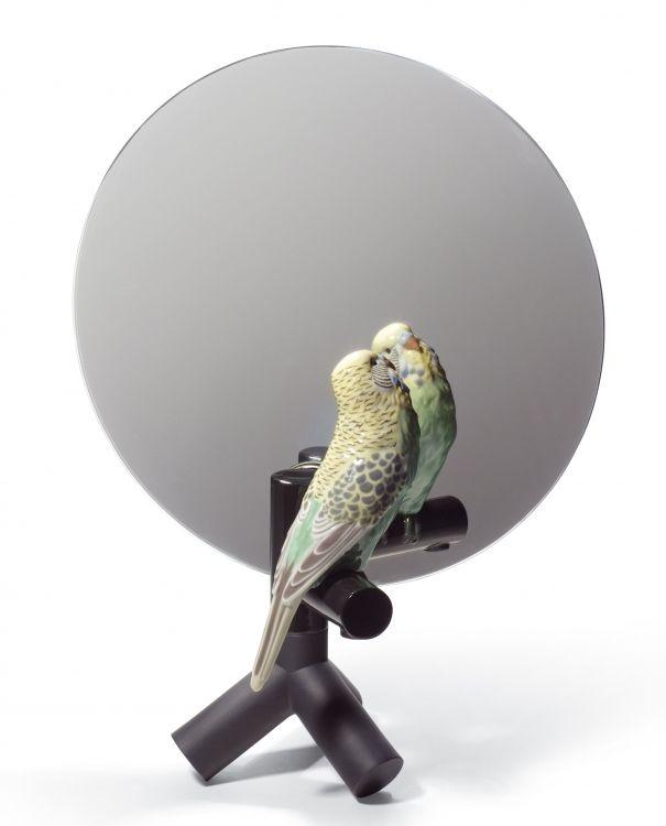 The Parrot Party | Web Design&Deco