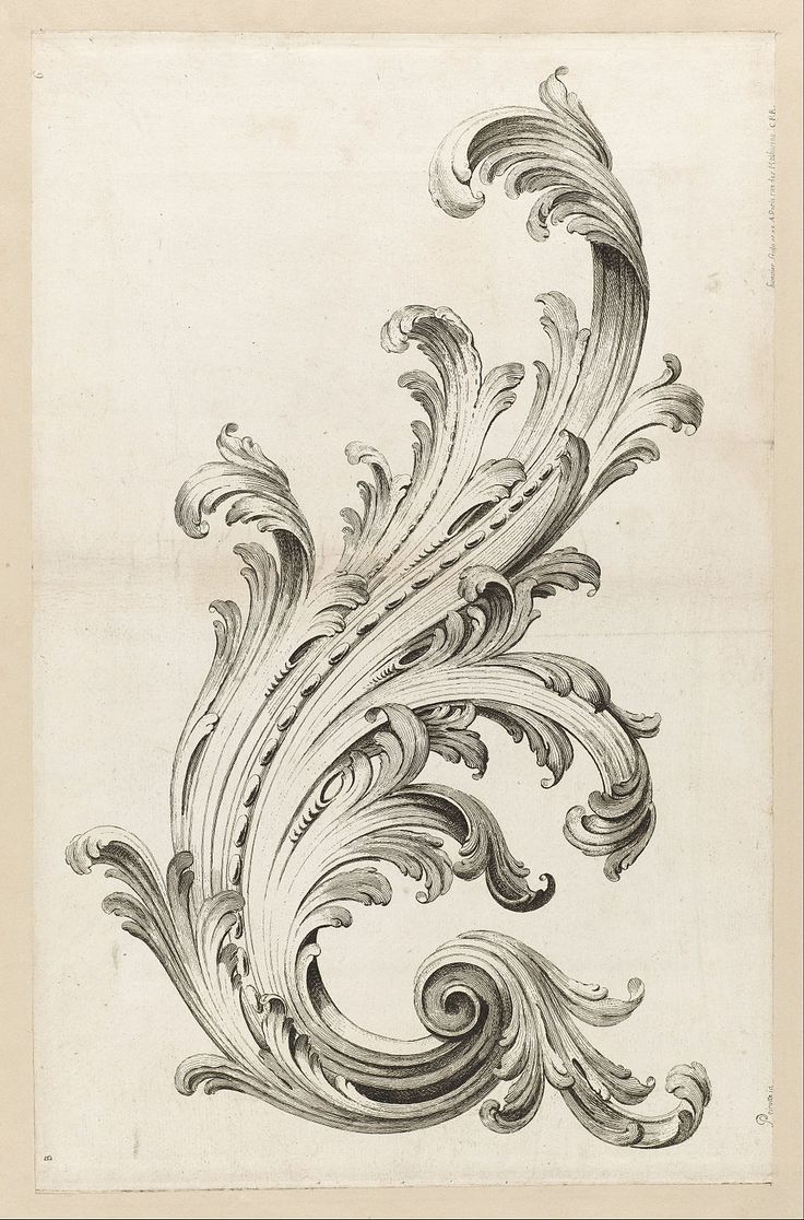 Acanthus leaves   I have always loved this, on Corinthian columns, and every way they have shown up through the ages in art motifs .  I have it growing in my yard ,too.