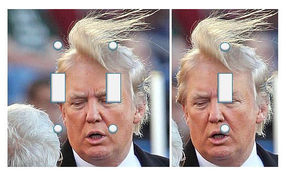 Donald Trump hair switch plate cover // SAME DAY SHIPPING**