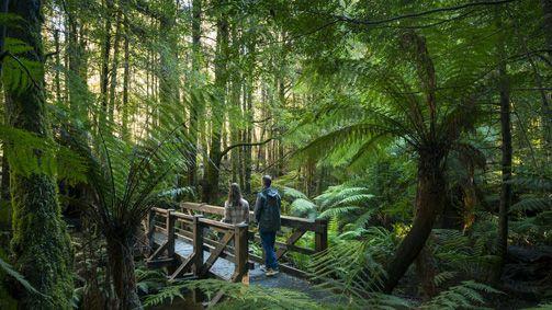 Yarra Valley and Dandenong Ranges, Victoria, Australia