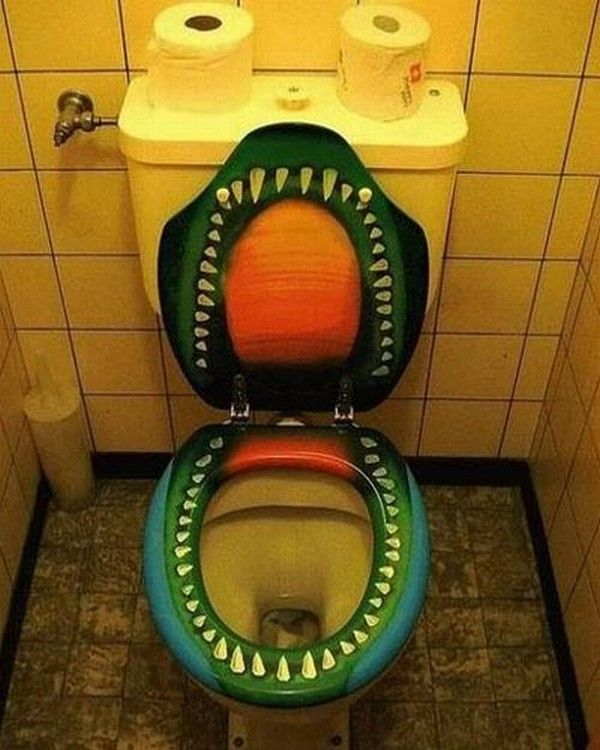 Funny pictures of commodes at home.